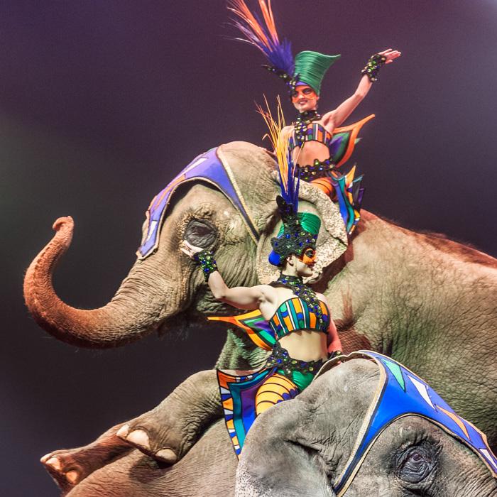 02-Le cirque