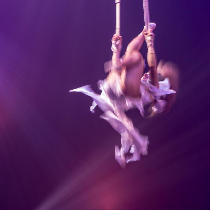 05-Le cirque