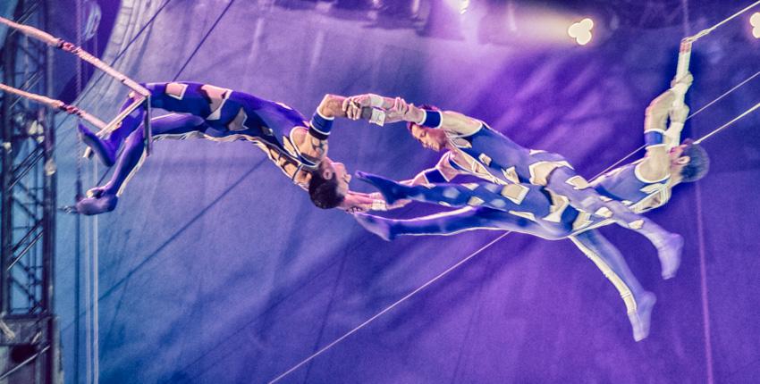 14-Le cirque
