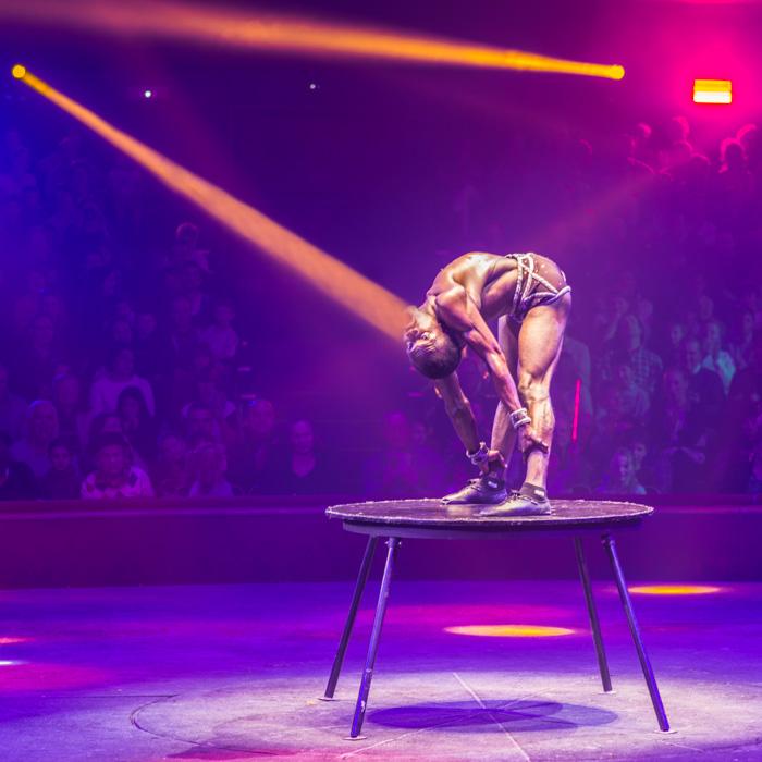 15-Le cirque