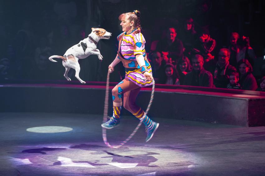 22-Le cirque