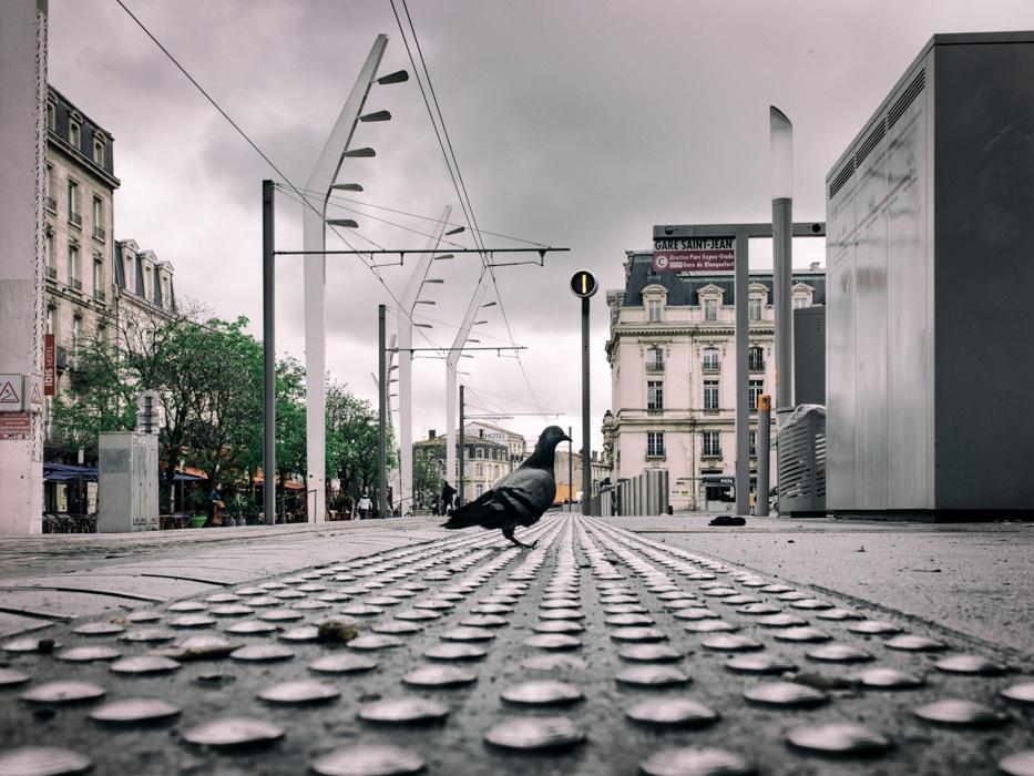 06-pulsations urbaines